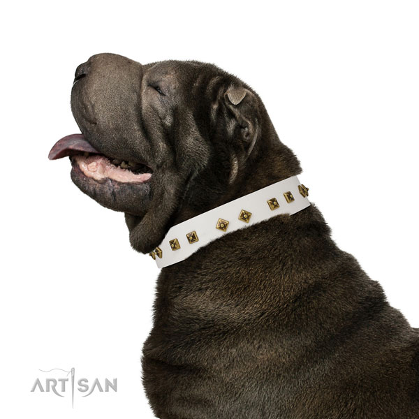 Exquisite studs on walking dog collar