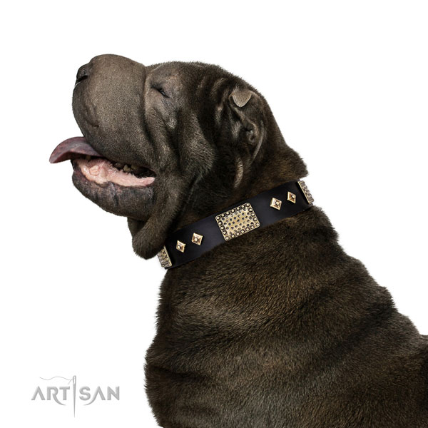 Reliable comfy wearing dog collar of leather