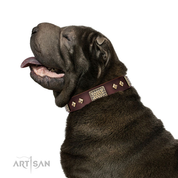 High quality basic training dog collar of natural leather