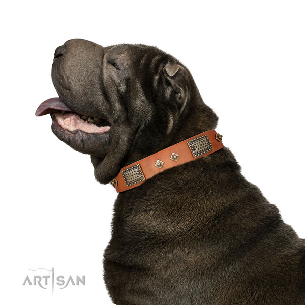 Comfy wearing dog collar of natural leather with awesome decorations