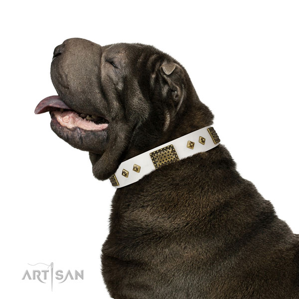 Everyday walking dog collar of natural leather with remarkable studs