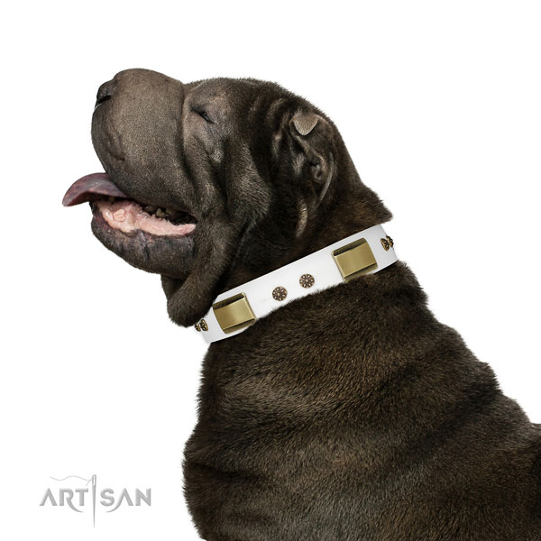 Comfortable wearing dog collar of leather with impressive adornments