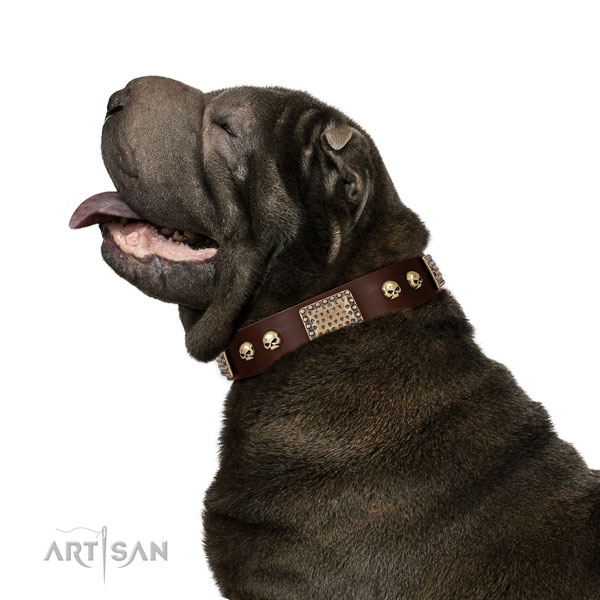 Corrosion resistant D-ring on full grain leather dog collar for comfortable wearing