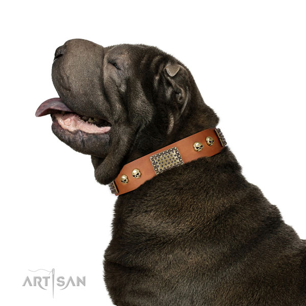 Reliable hardware on full grain leather dog collar for comfortable wearing