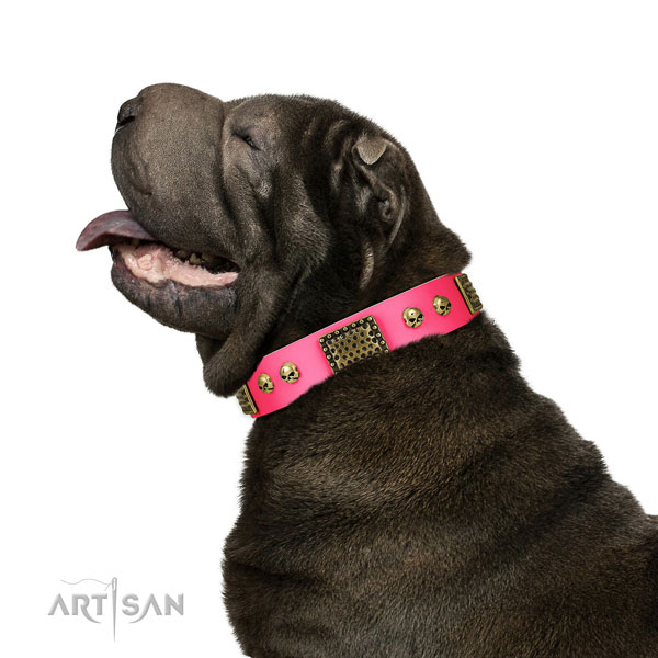 Corrosion resistant D-ring on full grain natural leather dog collar for daily use