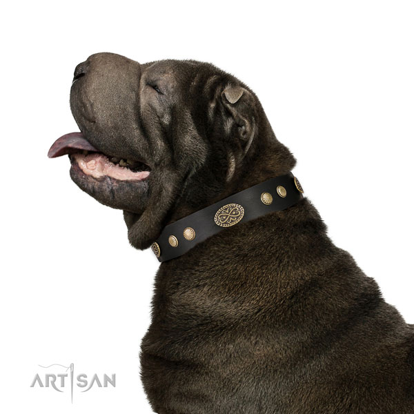 Corrosion proof fittings on leather dog collar