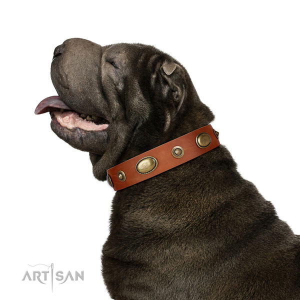 Easy wearing dog collar of natural leather with designer adornments