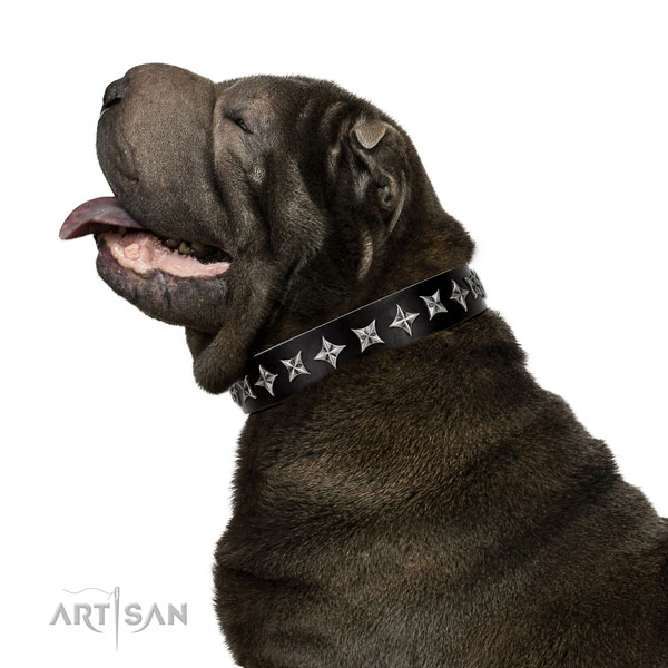 Comfy wearing studded dog collar of reliable natural leather