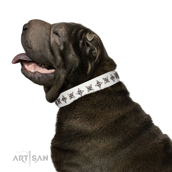 Reliable full grain genuine leather dog collar with inimitable studs