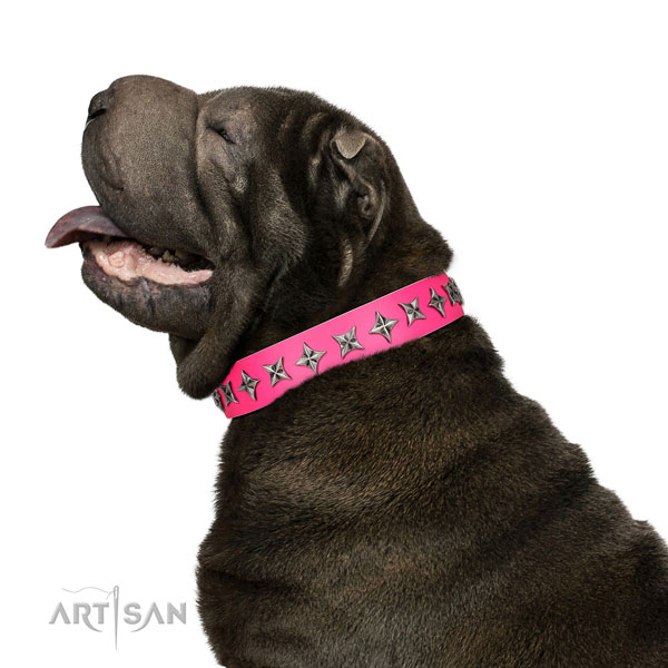 Quality genuine leather dog collar with inimitable embellishments
