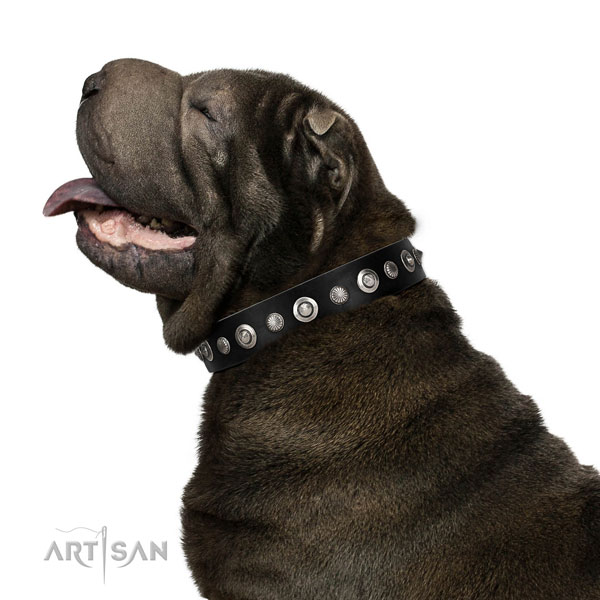 Finest quality full grain genuine leather dog collar with exceptional studs