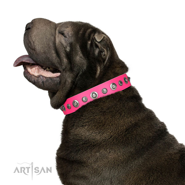 Full grain genuine leather collar with strong hardware for your beautiful dog
