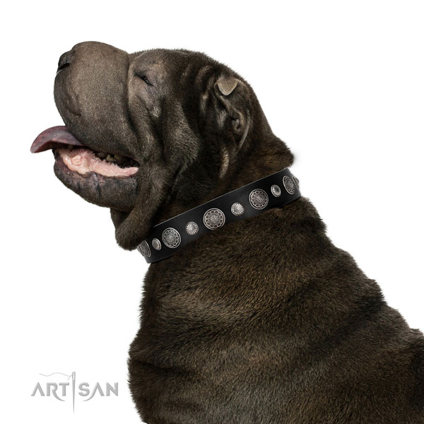 Genuine leather collar with durable hardware for your attractive doggie