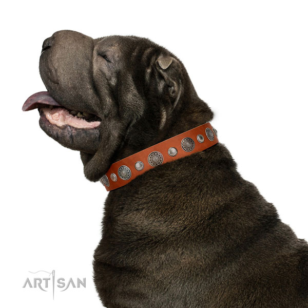 Unusual natural leather dog collar with rust resistant fittings
