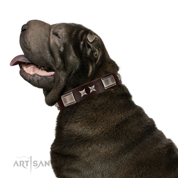 Awesome collar of full grain genuine leather for your beautiful doggie