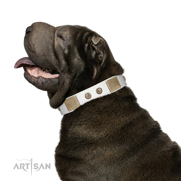 Durable buckle on full grain natural leather dog collar for fancy walking
