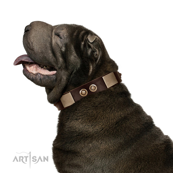 Corrosion proof fittings on leather dog collar for basic training