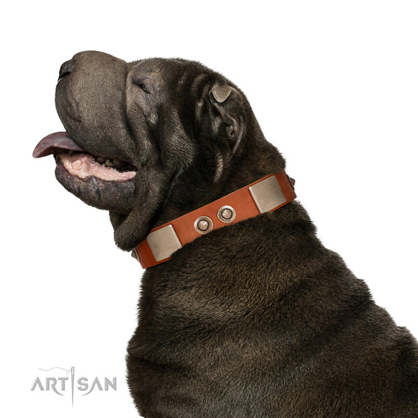 Corrosion proof fittings on full grain leather dog collar for everyday walking