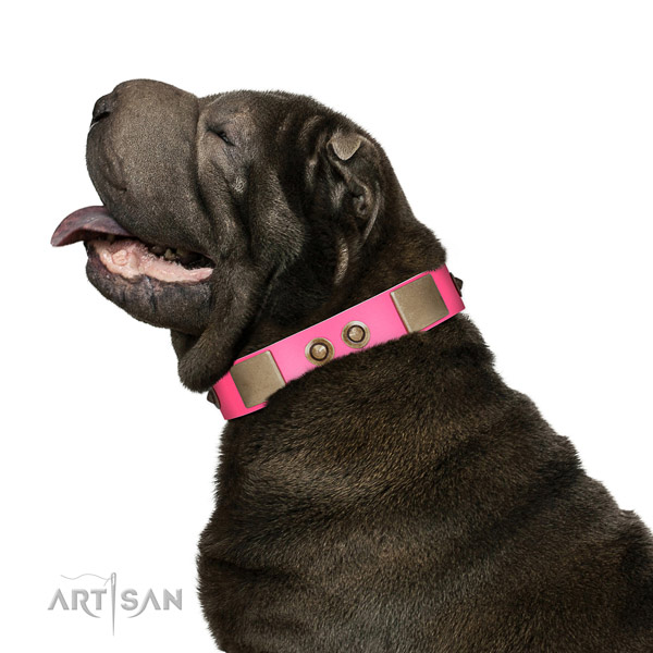 Fancy walking dog collar of leather with impressive decorations