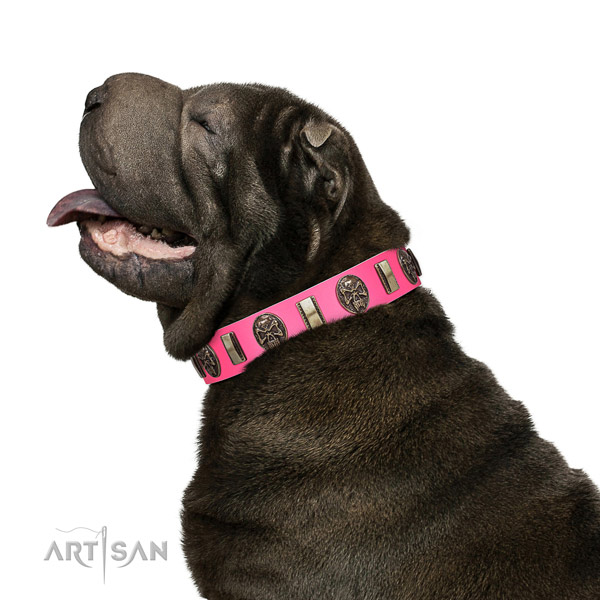 Rust-proof hardware on leather dog collar for walking