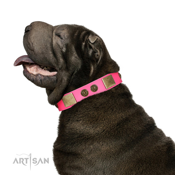 Convenient dog collar created for your beautiful pet