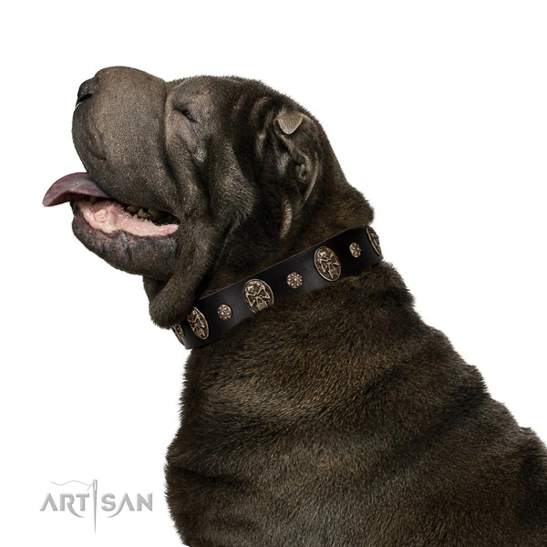 Walking dog collar of genuine leather with stunning adornments
