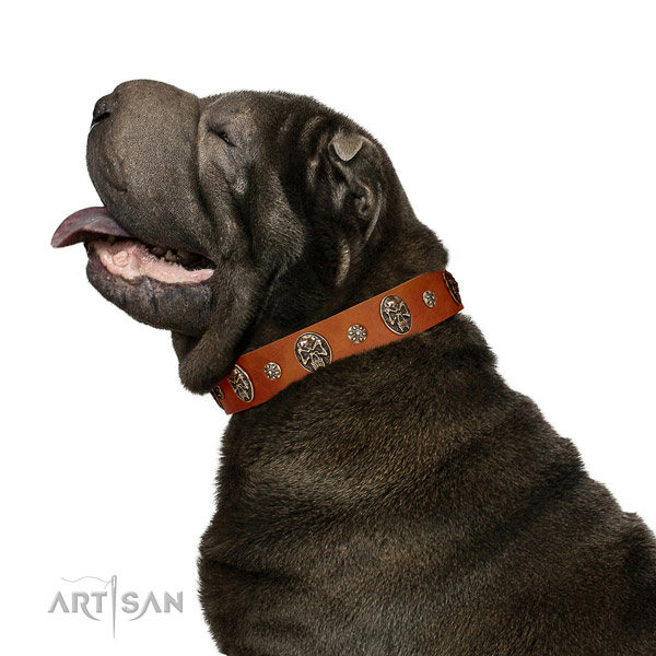 Walking dog collar of natural leather with amazing decorations