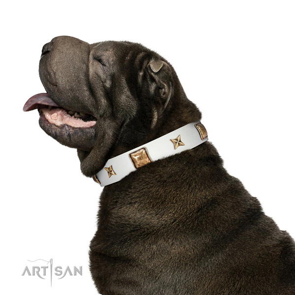 Convenient full grain genuine leather dog collar with studs