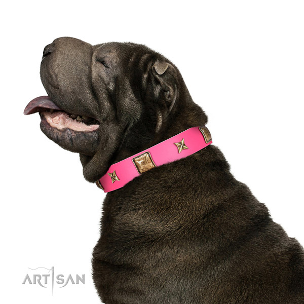 Full grain leather dog collar of reliable material with extraordinary decorations
