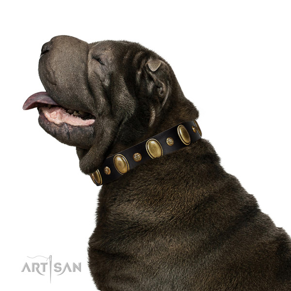 Leather dog collar of soft to touch material with fashionable adornments