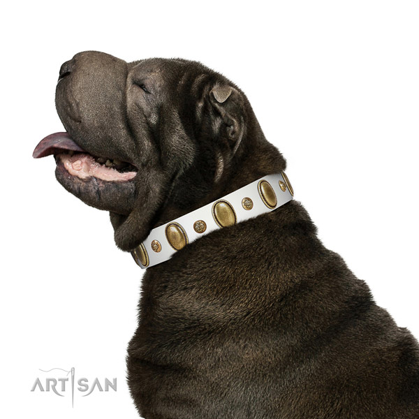 Everyday use high quality full grain genuine leather dog collar with studs