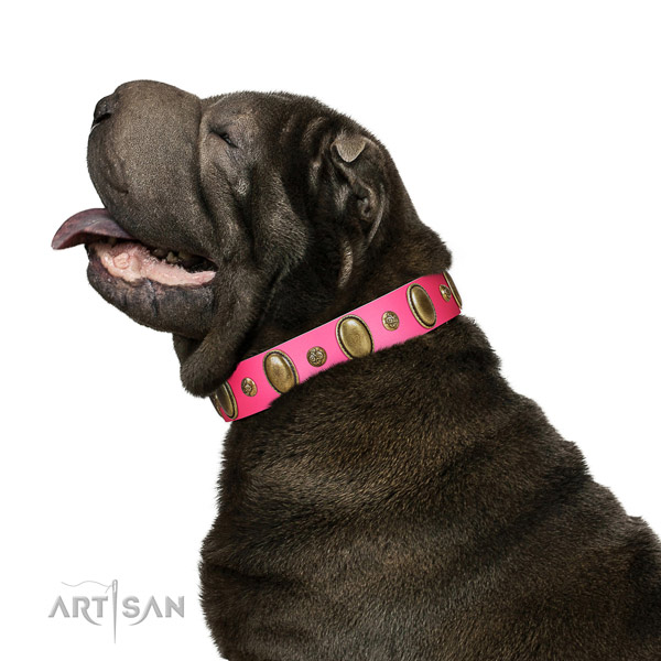 Easy wearing high quality full grain natural leather dog collar with embellishments