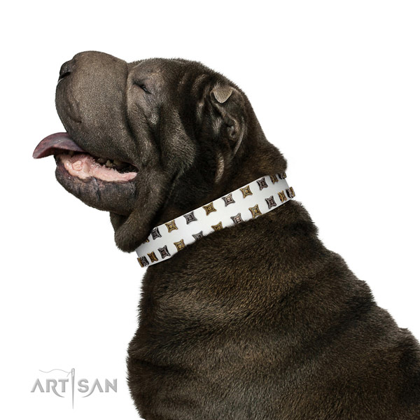 Quality genuine leather dog collar with embellishments for your four-legged friend