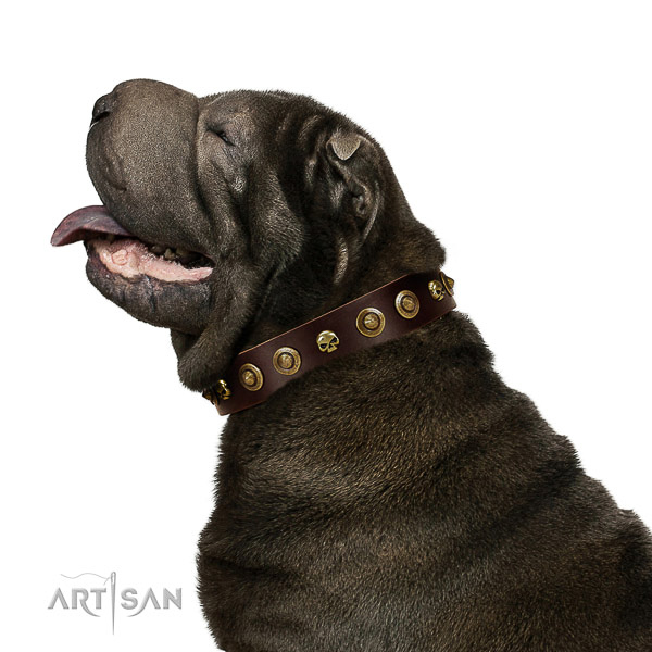 Gentle to touch leather dog collar with decorations for your dog