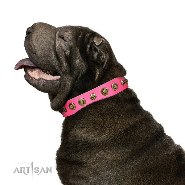 Exceptional genuine leather dog collar with adornments