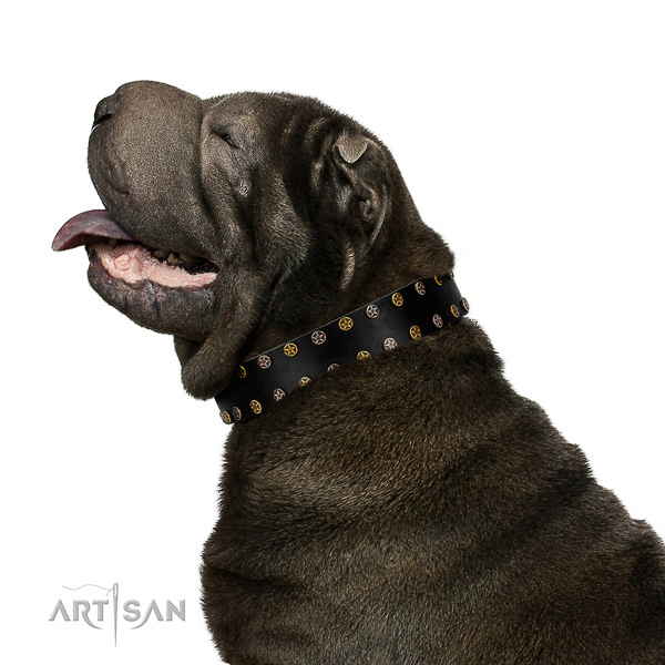 Impressive leather dog collar with rust-proof studs