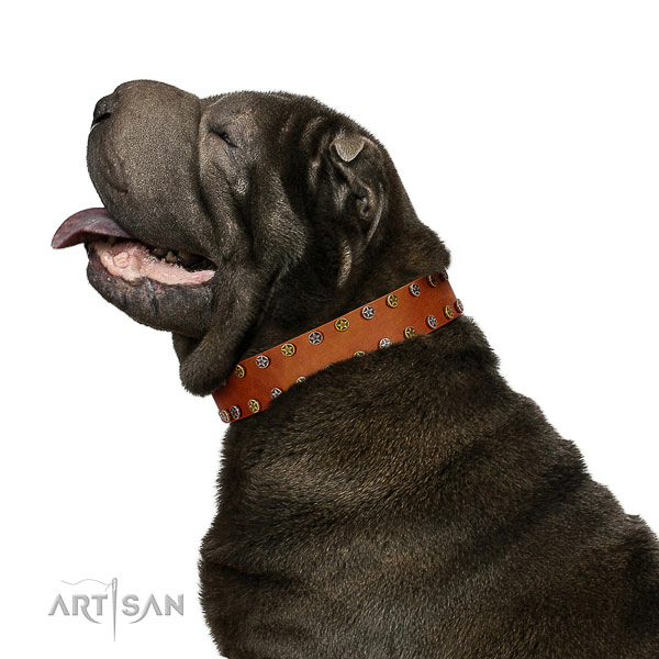 Walking best quality full grain leather dog collar with adornments