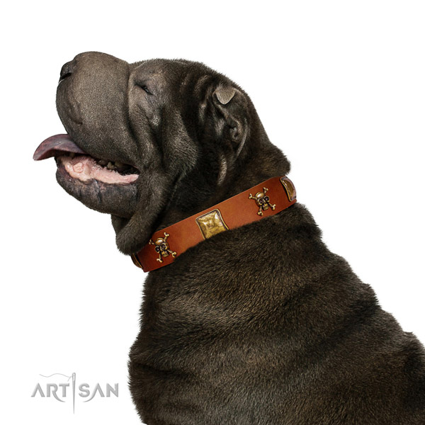 Inimitable full grain leather dog collar with corrosion proof adornments