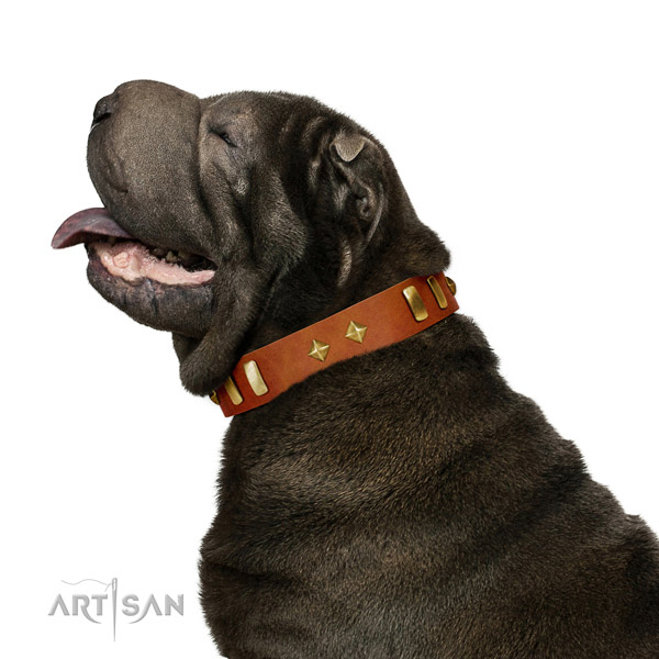 Walking gentle to touch full grain natural leather dog collar with adornments