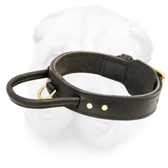 Two Ply Leather Dog Collar for Protection Training