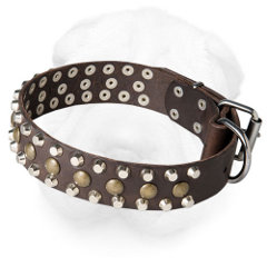Leather Shar Pei Collar Decorated with Metal Studs