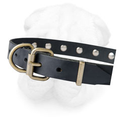 Shar Pei Collar Equipped with Reliable D-Ring