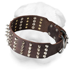 Shar Pei Collar Decorated with Spikes and Pyramids