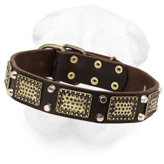 Shar-Pei Collar Decorated with Massive Plates and Pyramids