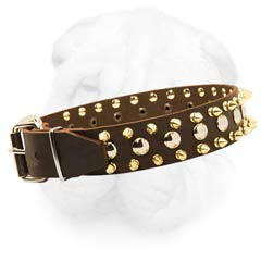 Neck Protecting Leather Dog Collar with Brass Spikes and Nickel Round Studs