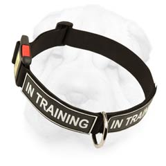 Strong Nylon Collar with identification patches for Shar Pei