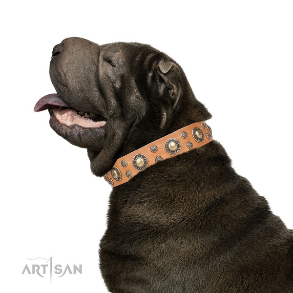 Sharpei natural genuine leather collar with rust-proof fittings for stylish walking
