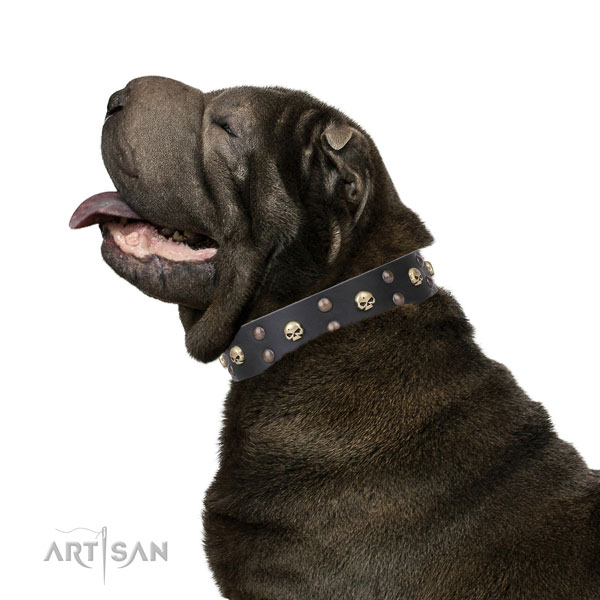 Sharpei natural genuine leather collar with rust resistant hardware for fancy walking