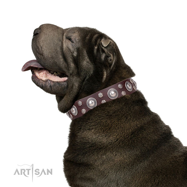 Sharpei full grain genuine leather collar with corrosion proof buckle for daily walking