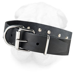 Steel Nickel Plated D-Ring on Leather Dog Collar